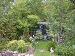 lush back garden