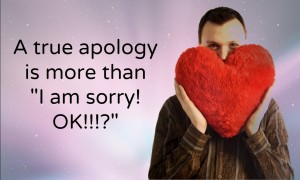 "A true apology is more than ""I am sorry. OK?"""