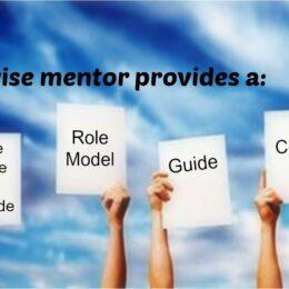 Wise mentors provide