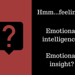 Image of questions about feelings/emotional intelligence and emotional insight