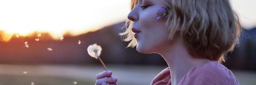dandelion  is unlike a rose; personality differences