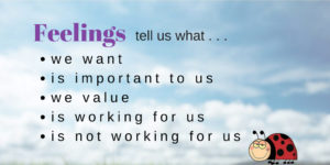 Feelings tell us